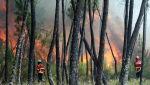 Pożary lasów w Portugalii (PAP/EPA/ANTIONIO JOSE)