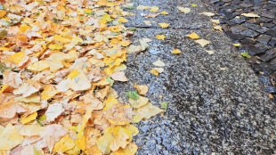 Prognoza pogody na jutro: pochmurno i deszczowo, ale ciepło