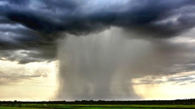 Eksperci o zmianach klimatu: <br />coraz więcej ulew i powodzi błyskawicznych